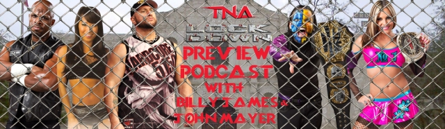TNA Lockdown 2013 Banner